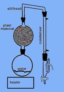 Essential Oil Steam Distillation Kit Still Distiller Ebay